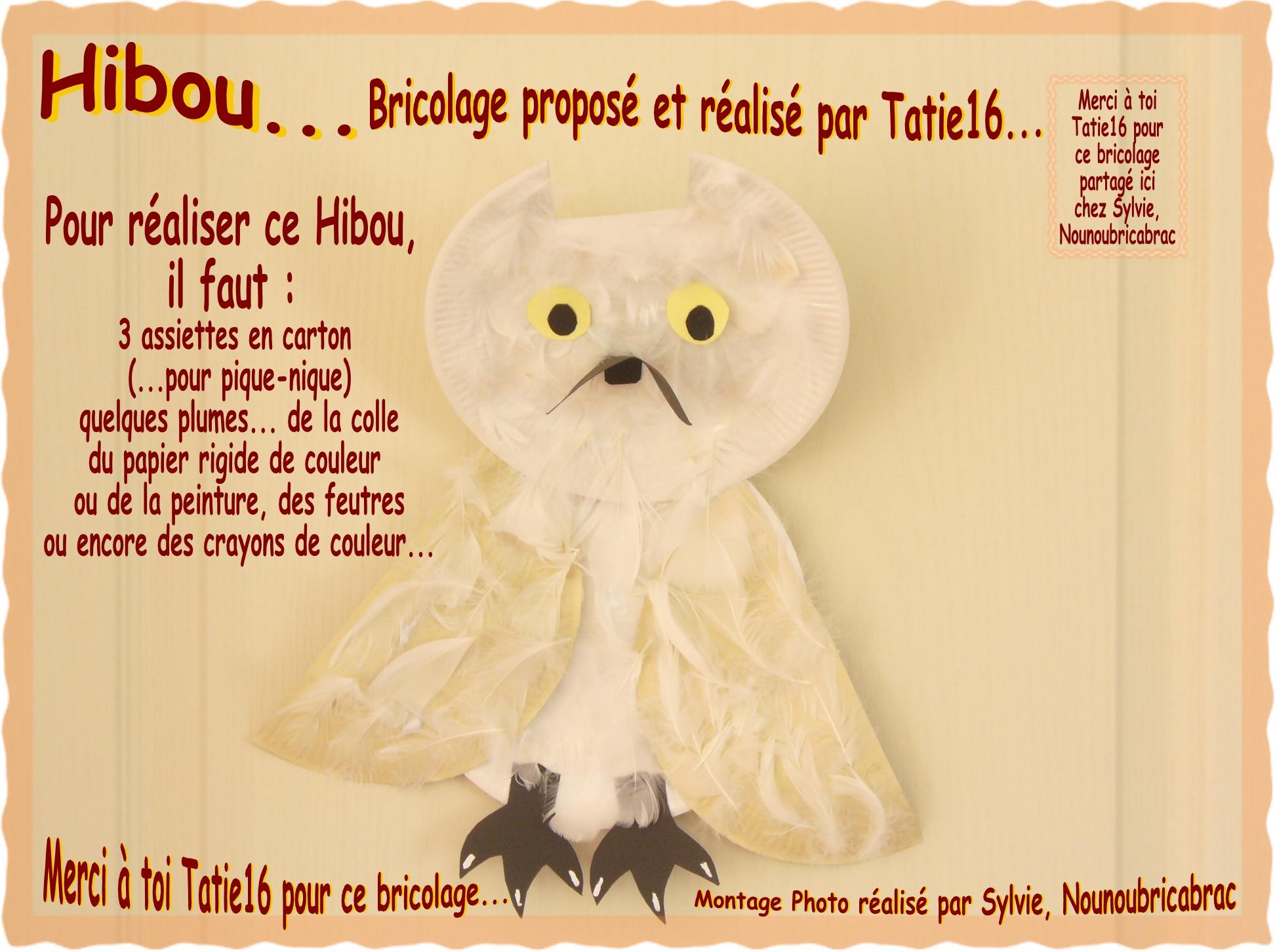 Hibou... bricolage proposé par Tatie16