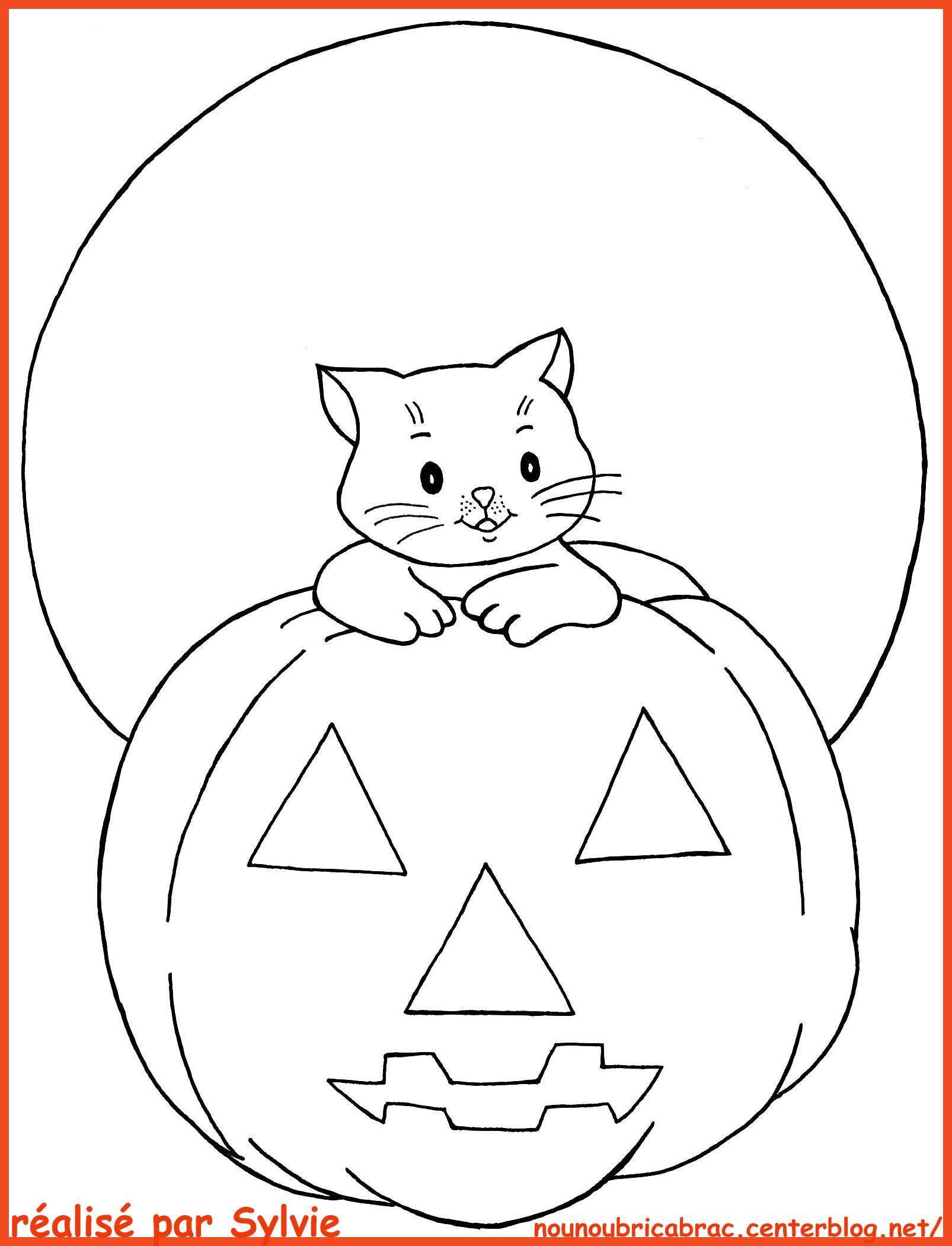 Beau Image Chat Halloween A Colorier