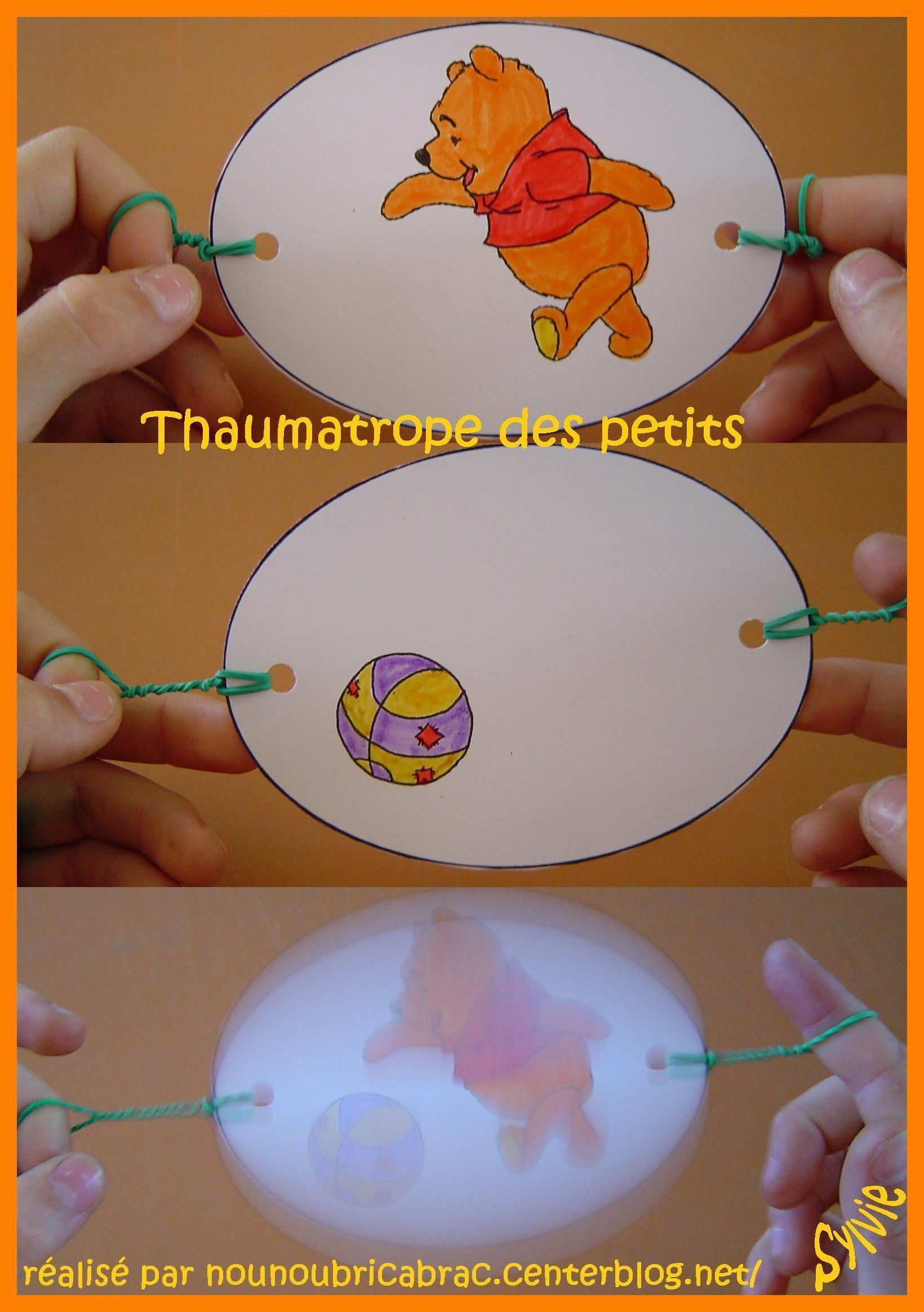 Thaumatrope Action !!!