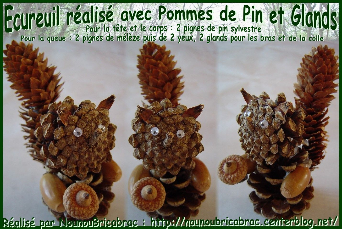 ecureuil fabriqu avec des pommes de pin pomme de pin bricolage photo. Black Bedroom Furniture Sets. Home Design Ideas