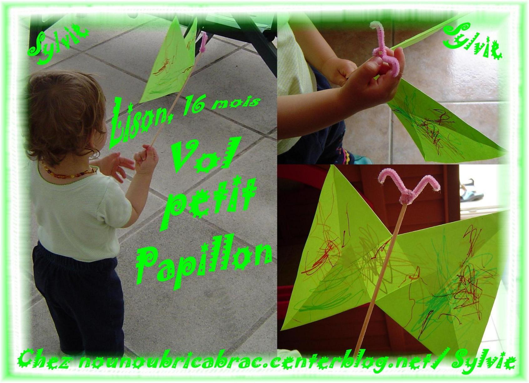 Papillon de Lison