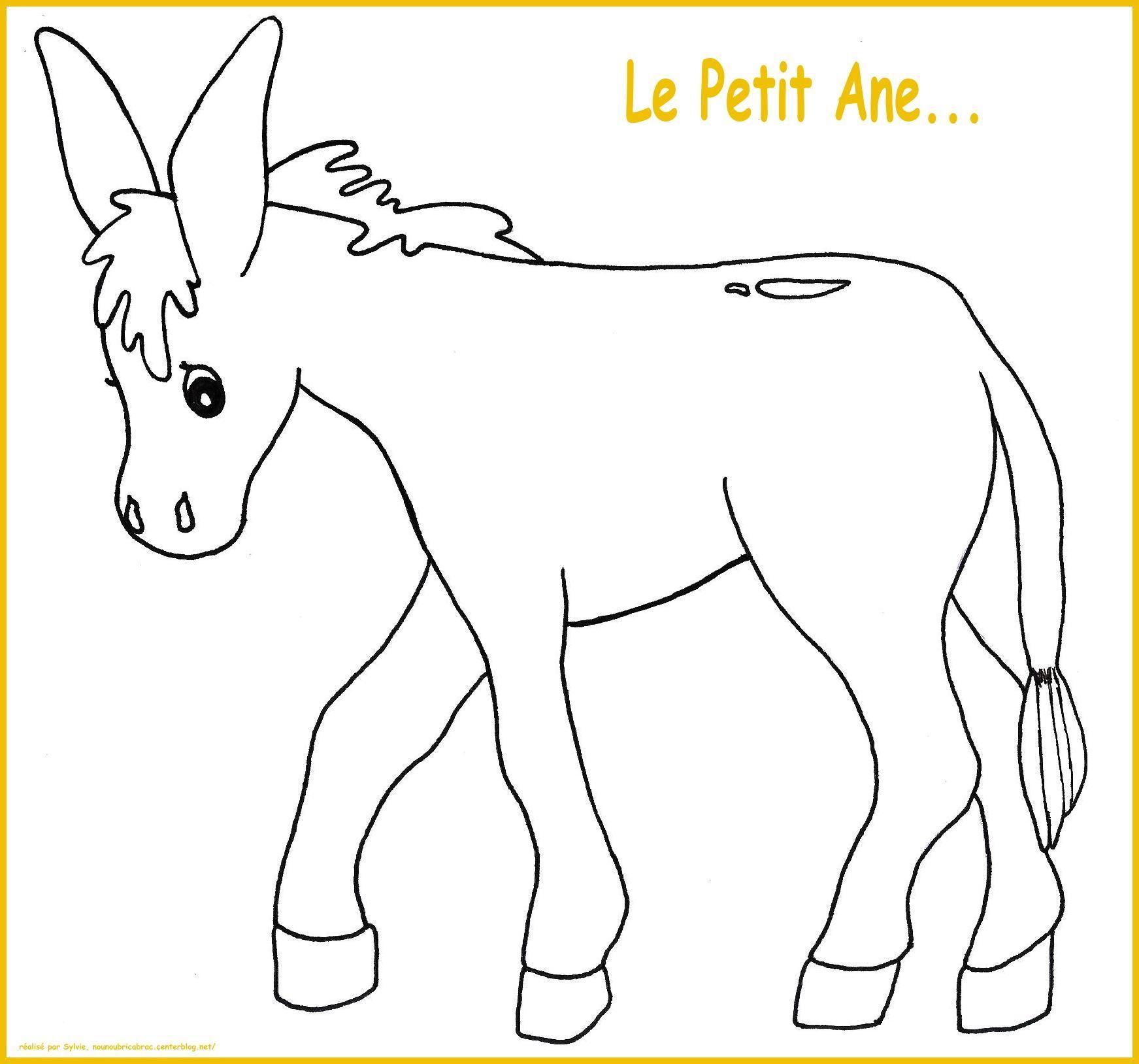 L'âne... à colorier